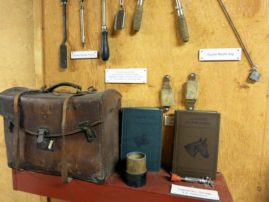 Leather veterinarian case and tools were used by Dr. Herman Diekema of Muskegon, MI.