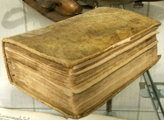 Jannes vande Luyster owned this Dutch Bible - c. 1704