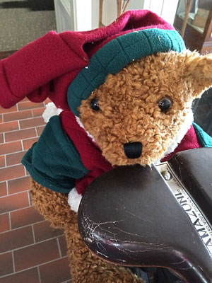 Teddy sits on an antique Dutch bike by the Huizenga Grocery Store