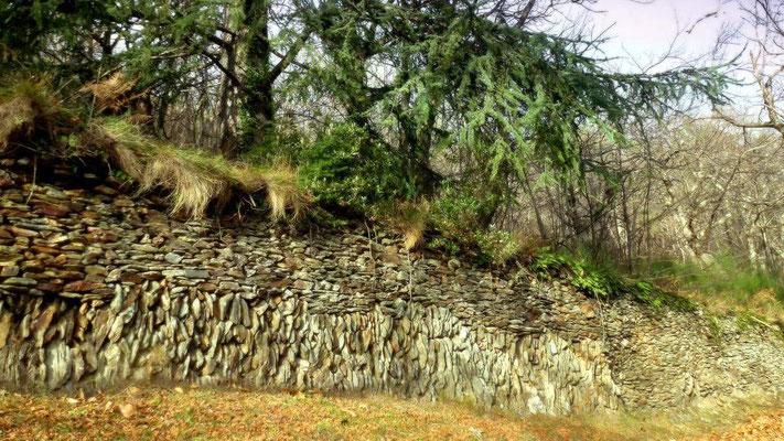 Vieux mur de pierres sèches