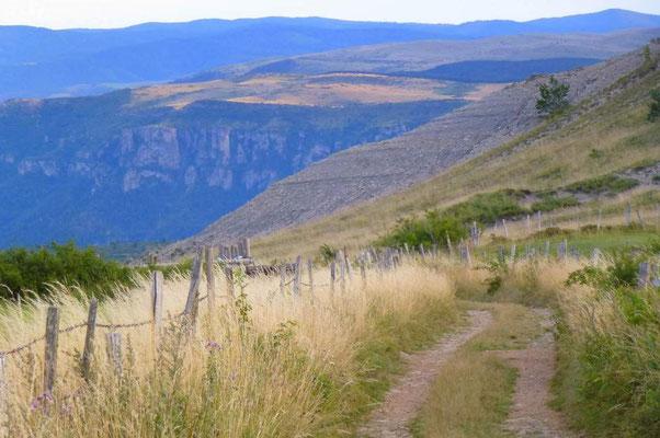 Oser les face à face de géants : du Mont Lozère au Causse Méjean