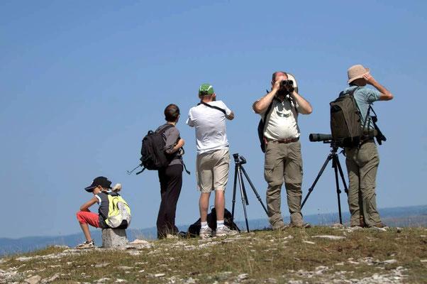 Se passionner : ornithologues sur le Causse Méjean