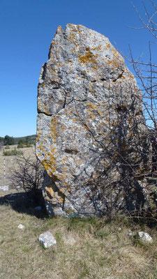 S'interesser à la Préhistoire : Mégalithe du Causse Méjean