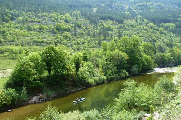 S'élever au dessus des Gorges du Tarn, près de Castelbouc
