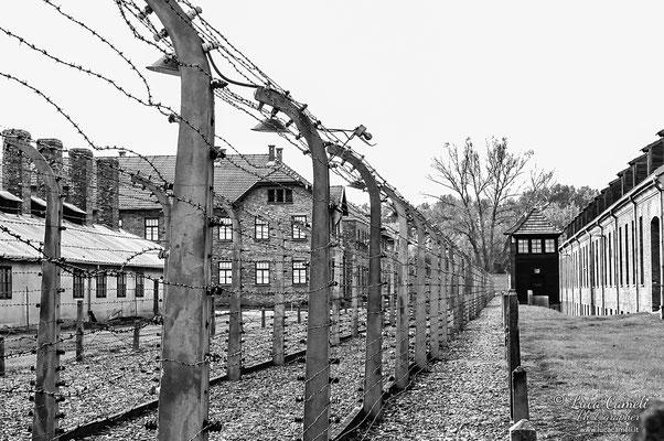 Auschwitz, Per Non Dimenticare - 27 Gennaio - Giorno Della Memoria. © Luca Cameli Photographer