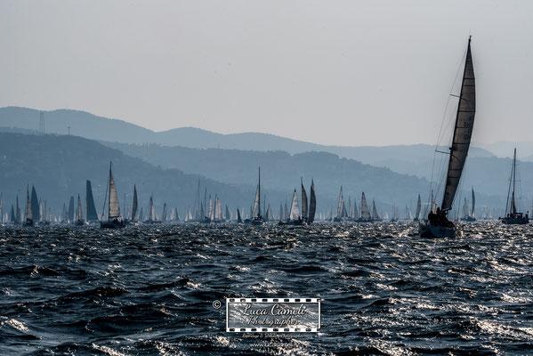Trieste - Barcolana50, Regata Barcolana, Frecce Tricolori