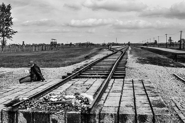 """Birkenau, Auschwitz II, """"E Adesso Sono Nel Vento"""". Per Non Dimenticare - 27 Gennaio - Giorno Della Memoria. © Luca Cameli Photographer"""