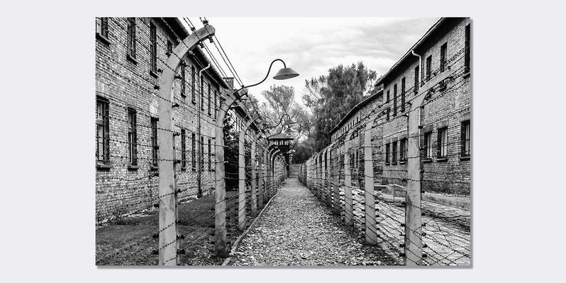 Auschwitz - Per Non Dimenticare - Selezionato Photo Vogue Italia. © Luca Cameli Photographer
