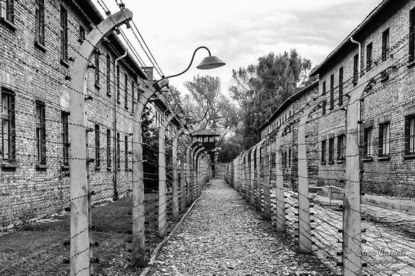 """Auschwitz, """"Il silenzio dopo l'Inferno"""". Per Non Dimenticare - 27 Gennaio - Giorno Della Memoria. © Luca Cameli Photographer"""