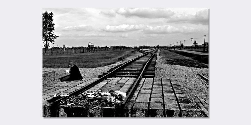 """Birkenau - Auschwitz II - Per Non Dimenticare, 27 Gennaio - Giorno della memoria - """"...E Adesso Sono Nel Vento..."""" Selezionato PhotoVogue Italia by VOGUE. © Luca Cameli Photographer"""