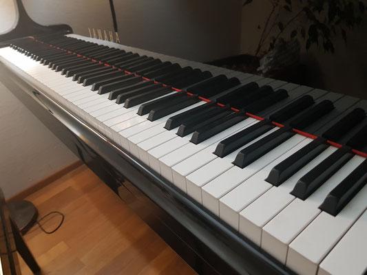 Kindheitstraum erfüllen und Klavier lernen. Für Träume ist man nie zu alt.