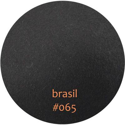 brasil #065