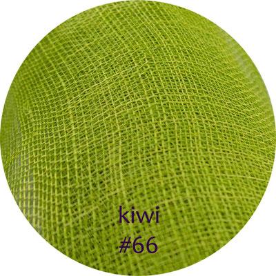 kiwi #66