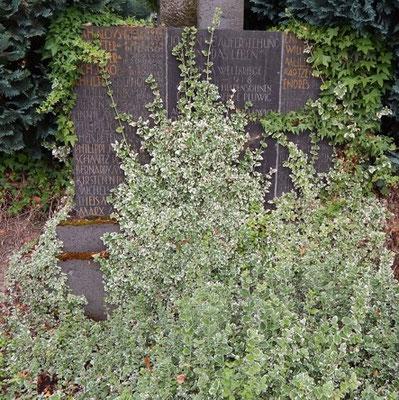 Pluwig. Kriegerdenkmal. Die Basalttafel mit den Namen der Gefallenen