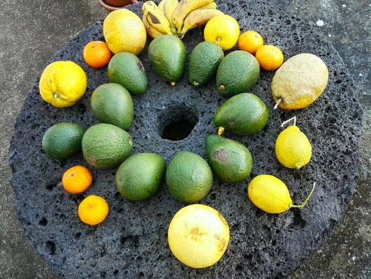 Mühlstein mit Früchten aus dem Garten
