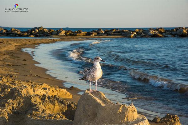 Fotos / Impressionen Follonica/ Toskana/ Italien