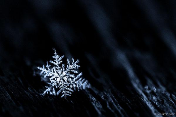 17 - Schneekristall