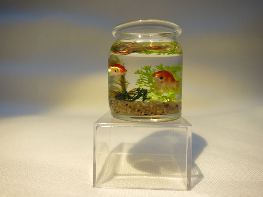 Miniature goldfish jar