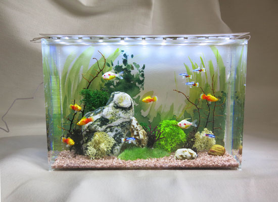 Miniature wall aquarium, size 10 x 15 x 5 cm, 1:12 scale