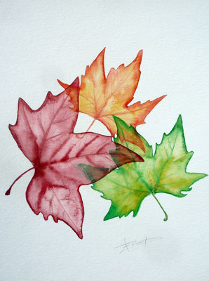 Transparent leaves, watercolor A4