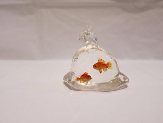 Goldfish plastic bag