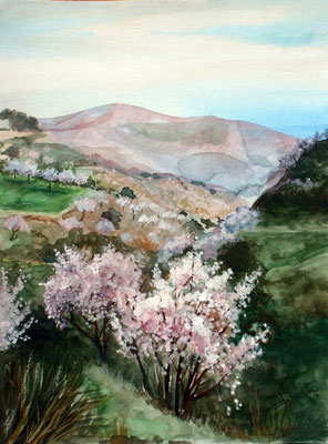 Towards the coast of Granada, watercolor 31x41cm