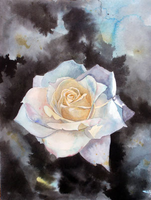 Pristine rose, watercolor 21x31 cm