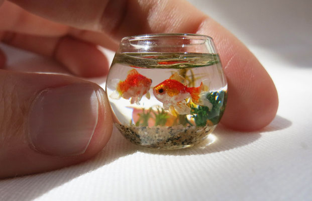 Miniature fish bowl