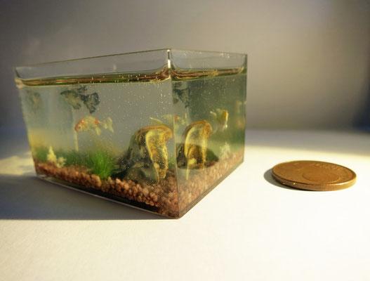 Acuario de peces Koi 5,5x4,1x3,4 cm