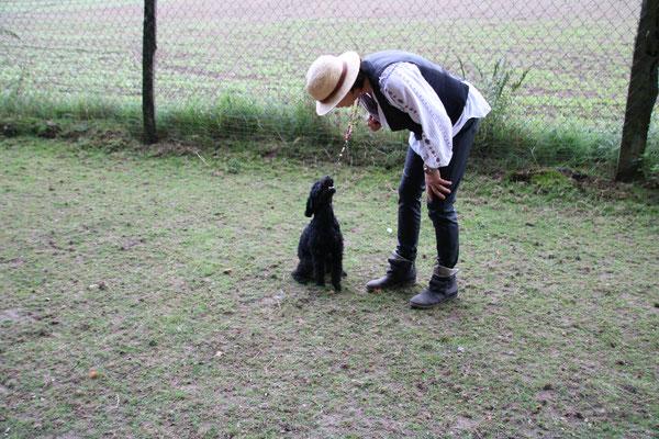 Wie spricht der kleine Hund? Wufff!