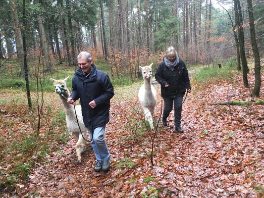 Gemeinsam geht es in den Klecker Wald.