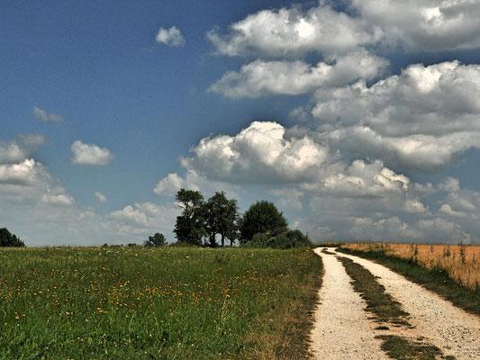 Dr. Roland Zeiger: Sommer in der Rhön