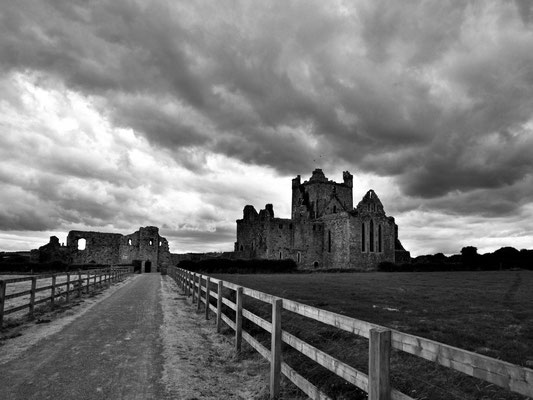 Dr. Roland Zeiger: Irland - Dunbrody Abbey