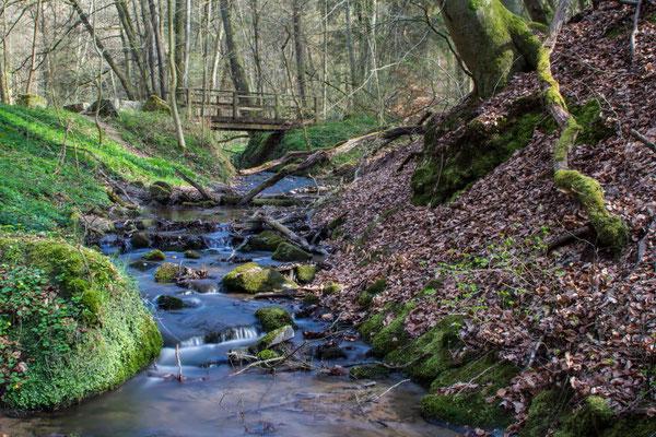 Steinbachtal im Spessart