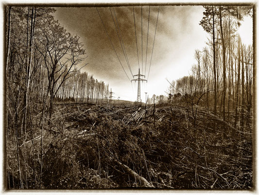 Wolfram Grusdat: Ernergiekrise