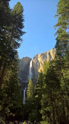 Yousemite Falls