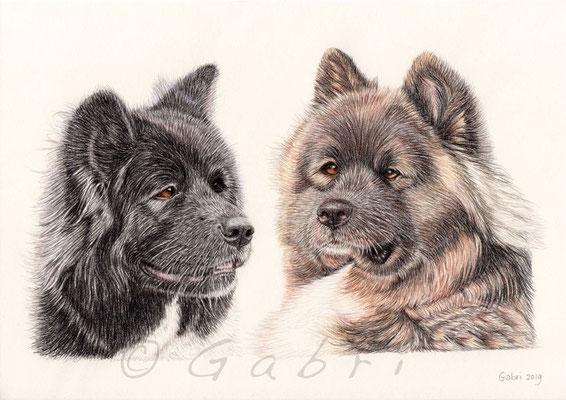 Naiya & Koda