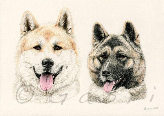 Yashi & Chika