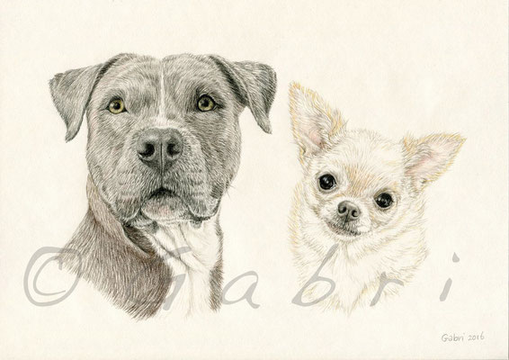 Kobe & Annie