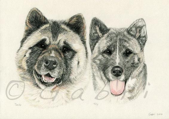 Tonka & Tilly