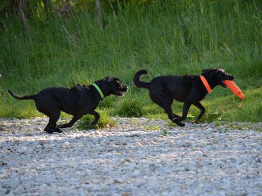 Chaya und Cayden beim Rennspiel