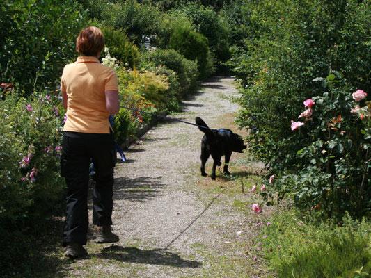 Die Tarifgebiete können völlig unterschiedlich sein: durch Gärten auf Kiesweg ...