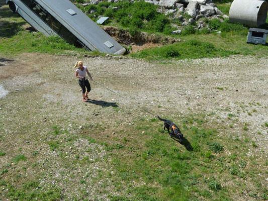 Auf ins nächste Abenteuer: Trailen auf dem Trümmergelände der Bayerischen Rettungshundestaffel e.V.