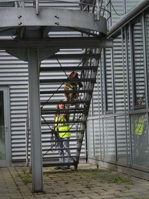 Immer wieder spannend zu sehen, wie sich Geruch verteilt: Lotte checkt eine offene Treppe