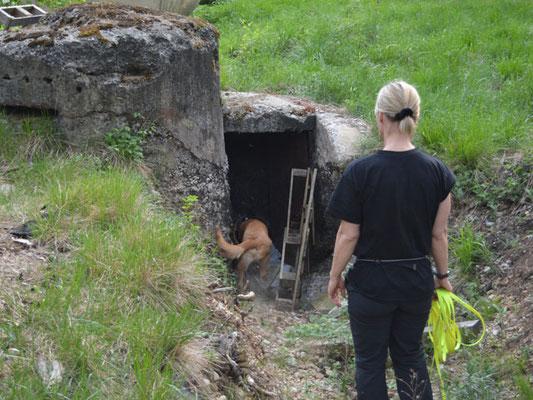 Luke arbeitet sich ins unterirdische Versteck vor