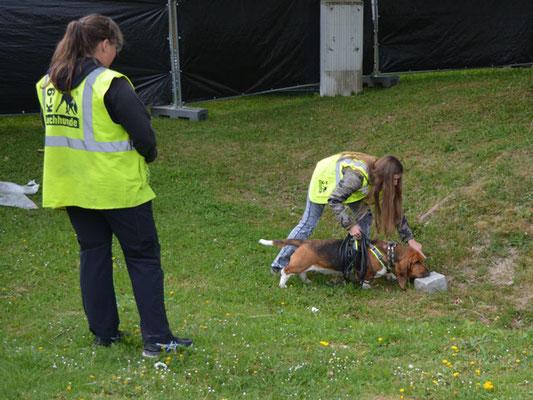 Lotte riecht am Stein an, den ihre Versteckperson zuvor berührt hat