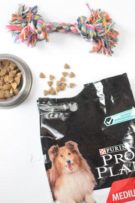 Purina PRO PLAN Hundefutter für einen gesunden Start in den Tag.