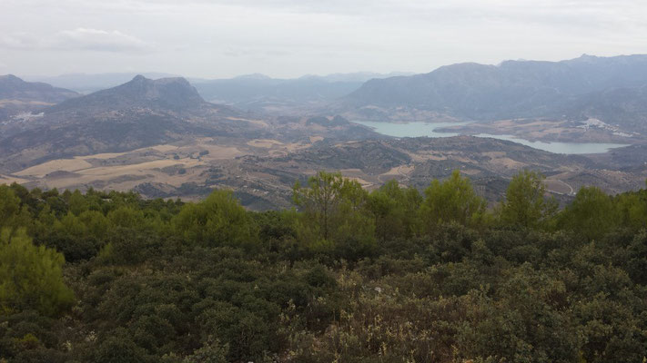 Irre Aussicht auf El Gastor, Zahara de la Sierra und den Stausee. Bis zur Serranía de Ronda kann man sehen.
