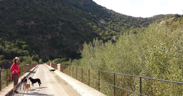 Der Viadukt ist ca. 100m lang und überquert einen kleinen Fluss, der jetzt im Oktober wieder beginnt Wasser zu führen.