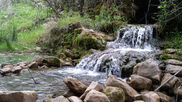 Kleine Erfrischung am Fluss neben der Bahnlinie. Im Frühjahr sprudeln die Quellen.